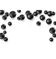 black balloons isolated on white background vector image