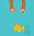 cat paw catch fishing gold fish under water vector image vector image