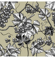 seamless background wine grapes engraving vector image