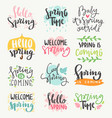 spring time lettering greeting cards set special vector image vector image