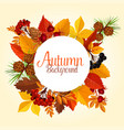 autumn poster of leaf fall and forest berry vector image vector image