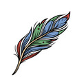 colorful feather vintage concept vector image vector image