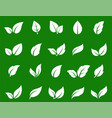 hand drawn white abstract leaf icons set vector image
