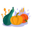 pumpkin composition diverse pumpkins on white vector image