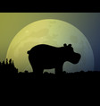 big moon in the night sky silhouette black hippo vector image vector image