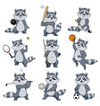 cartoon raccoon play sports mascot icons vector image vector image