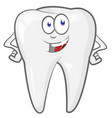 glad strong shielded cheerful cartoon tooth vector image vector image