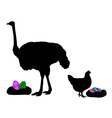 Hen and ostrich with easter eggs vector image vector image