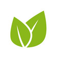 herb leaves green logotype icon for organic vector image