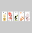 set cards abstract doodle flowers autumn vector image