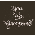 Handwritten lettering phrase You are vector image vector image