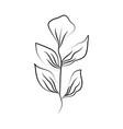 minimalist tattoo leaves foliage herb line art vector image vector image