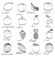 Set fruit icons hand-drawn Monochrome Collection vector image vector image