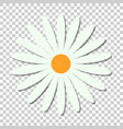 chamomile flower icon in flat style daisy on vector image vector image