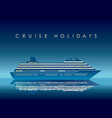 cruise liner at night with text space vector image
