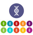 dna strand set icons vector image vector image