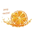 drawing slice of orange vector image vector image