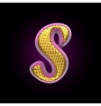 golden and pink letter s vector image vector image