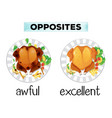 opposite word of awful and excellent vector image vector image