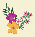 plumeria flowers decorative image vector image vector image