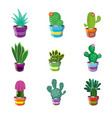 set of different cacti vector image vector image