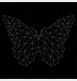 abstract butterfly of lines and dots vector image vector image