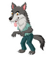 cartoon angry werewolf isolated vector image vector image