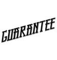 guarantee typographic stamp vector image