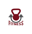 kettlebell and barbell fitness design template vector image