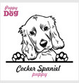 puppy cocker spaniel - peeking dogs - breed face vector image vector image