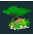 Set isolated colorful corals and algae vector image