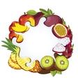 Yogurt splash isolated on tropical fruit vector image vector image