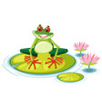 a red eyed tree frog on lily pad vector image