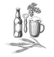 beer sketch elements set vector image
