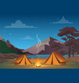 camping in night time with vector image