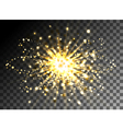 Christmas shining gold glitter burst vector image