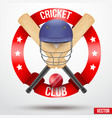 Cricket bats and helmet with ribbons vector image