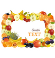 fruit design background vecto vector image vector image
