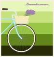 Bicycle with lavender in basket Vintage poster vector image vector image