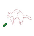 cat feel scared from seeing cucumber vector image vector image