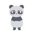 cute little panda animal cartoon isolated design vector image vector image