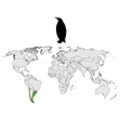 Magellanic penguin range vector image