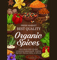 spices and herbs on wooden background vector image vector image