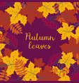 Autumn floral background with colorful