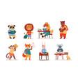 cute charming little cartoon animal students vector image