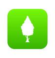 cypress icon digital green vector image vector image
