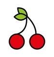 fesh fruit cherries isolated icon design vector image