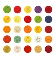 Fruit and vegetables color linear icons set vector image