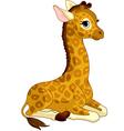 giraffe calf vector image vector image