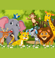 group of animals in jungle vector image